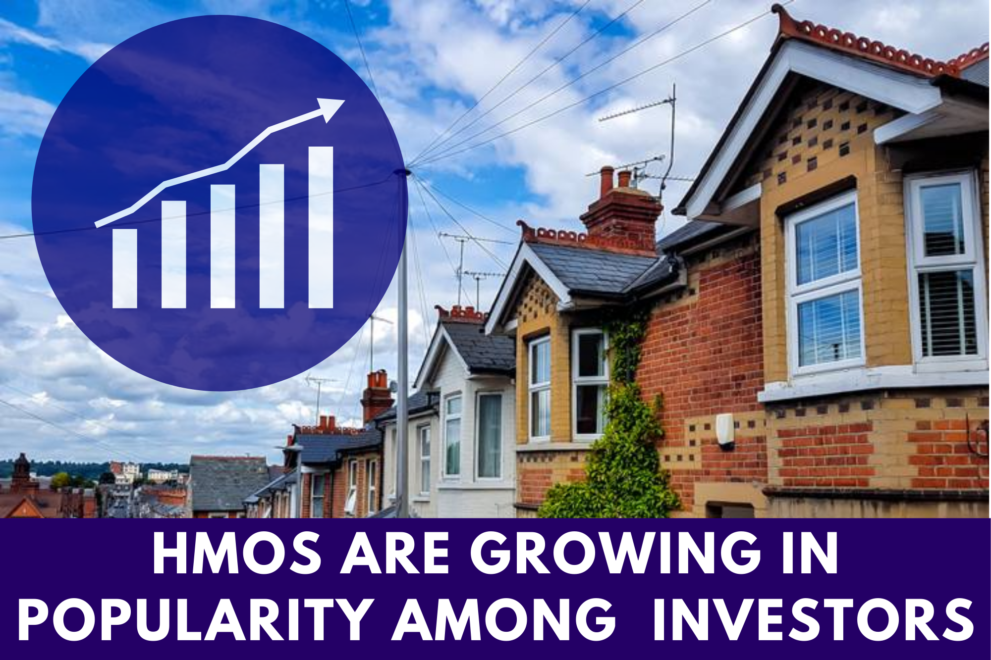 hmos are growing in popularity among investors