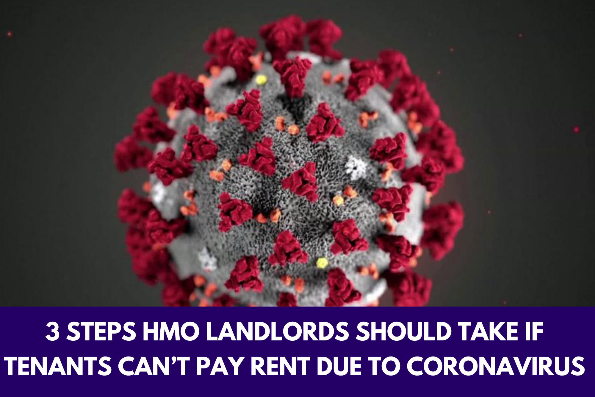 HMO Landlords Corona virus